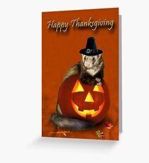 Thanksgiving Pilgrim Ferret Greeting Card