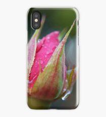 rose bud iPhone Case/Skin