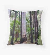 Carnarvon Gorge, Outback Queensland Throw Pillow