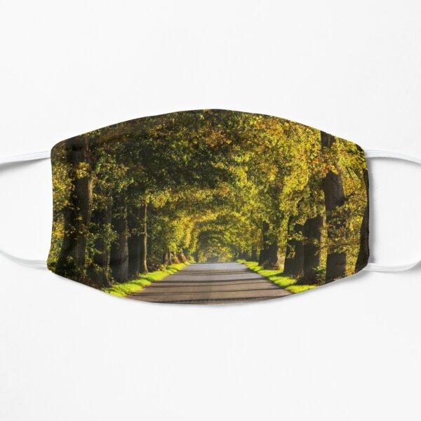 Road Art Flat Mask