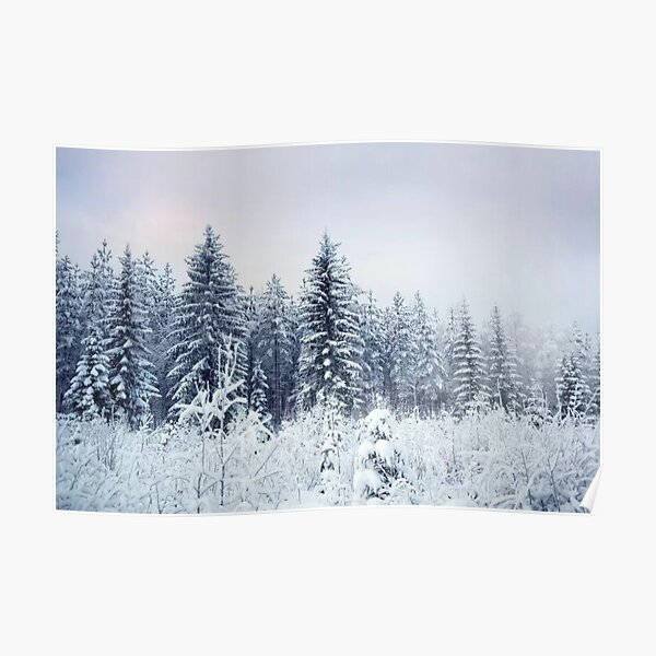 Where Christmas Trees Are Born Poster