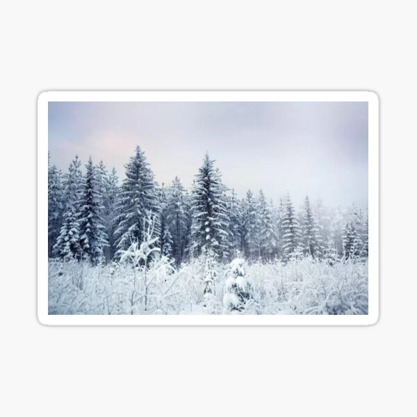 Where Christmas Trees Are Born Sticker