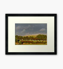 Sunshine and rain, County Kilkenny, Ireland Framed Print