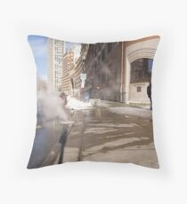 View of Three States Throw Pillow