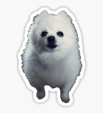 Gabe The Dog - BEST SELLING, VIRAL MEME, FAMOUS DOG Sticker