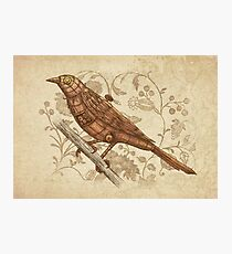 Steampunk Songbird  Photographic Print