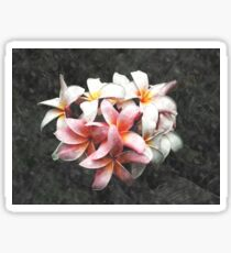 Watercolour Pink and White Petals Sticker