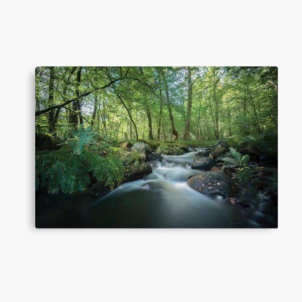 Fresh River Canvas Print