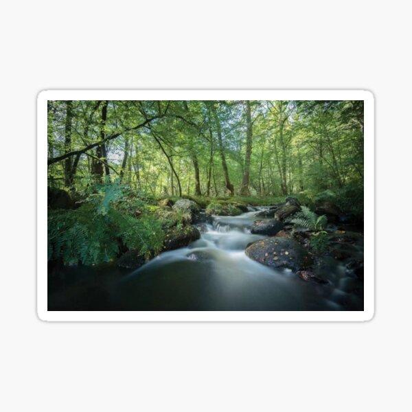 Fresh River Sticker