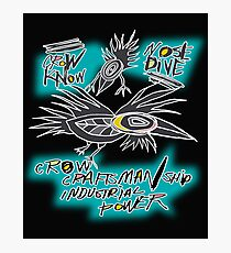 crow fly Photographic Print