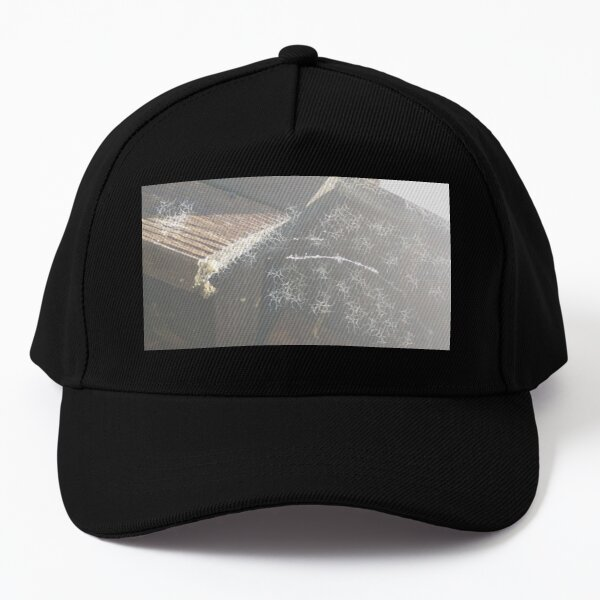 House Rooftop Covered in Web Baseball Cap