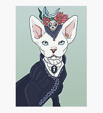 Victorian vampire kitty Photographic Print