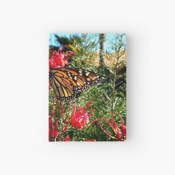 Monarch Butterfly  Hardcover Journal