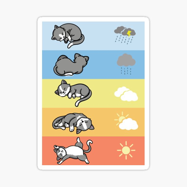 lustige Schlafende Wetter Katzen kuschel outfit Sticker