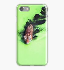 Beautiful Tiger in the Water iPhone Case/Skin
