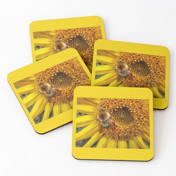Bumblebee Sunflower Coasters (Set of 4)