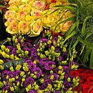 flowers- Amsterdam flower market by David Chesluk