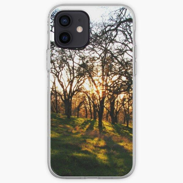 Sunlight in the Oaks iPhone Soft Case