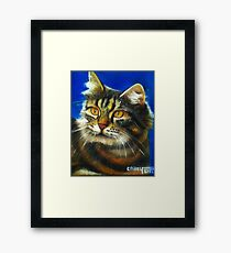 Cathy the cat Framed Print