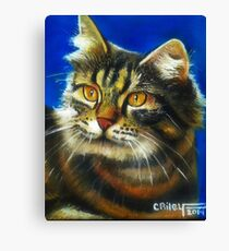 Cathy the cat Canvas Print