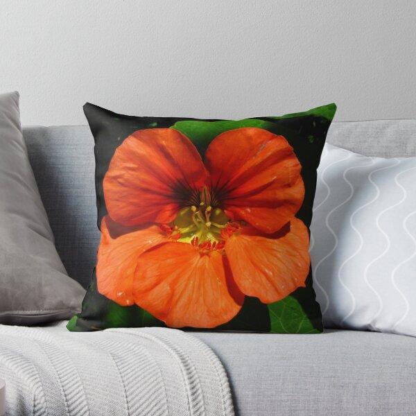 Orange nasturtium flower Throw Pillow