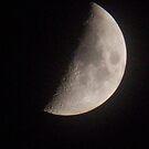 Moonshine by DES PALMER