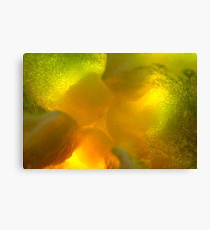 tréfonds en fusion Canvas Print