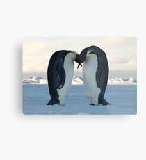 Emperor Penguin Courtship Metal Print