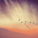 Falling Skies by DejaReve