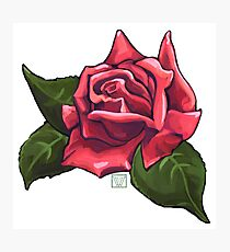 Painted Red Rose Photographic Print