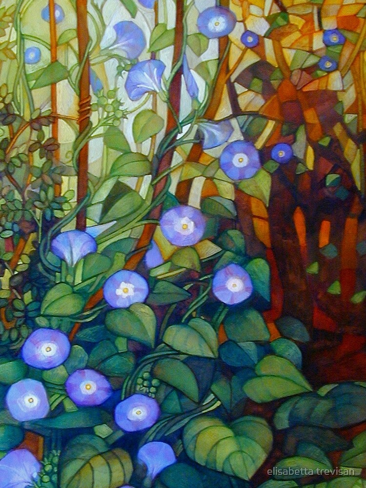 "Ipomoea ""caerulea blue"" by betta"