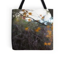 Autumn Glow (Orange) Tote Bag