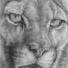 Up Close Cougar by BarbBarcikKeith