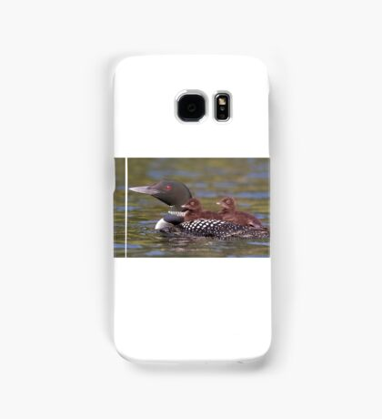 Common loon swimming with two chicks on her back Samsung Galaxy Case/Skin