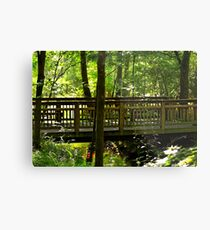The Quiet Bridge Metal Print