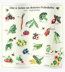 Fruit Vegetable Poster