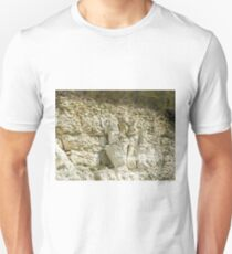 Peregrine Falcon on Cliff Face T-Shirt