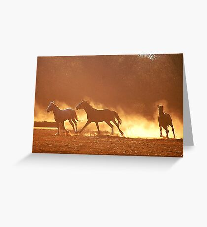 """HORSES IN SILHOUETTE"" at DUSK, RUNNING WILD,RUNNING FREE Greeting Card"