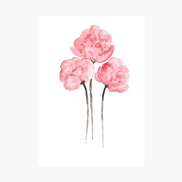 Pink Peony Bouquet Flower Watercolor Painting Drawing Poster Photographic Print