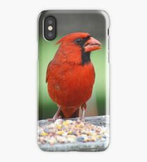 Cardinal (Cover) iPhone Case