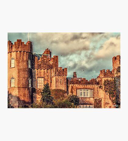 Family Castle Photographic Print