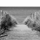 Path to the Beach by FelipeLodi
