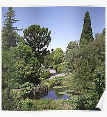 Duck Pond, Botanical Gardens Poster