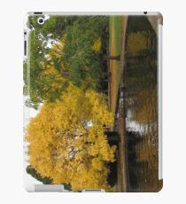 Salmon Ponds iPad Case iPad Case/Skin