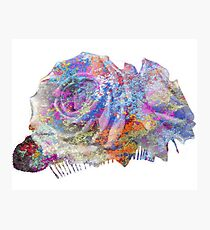 Rose Colorful Brush Photographic Print