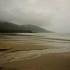 Cape Tribulation by D-GaP