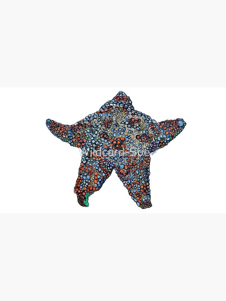 Astro  the Sea Star by Wildcard-Sue