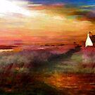 Summer Sunset by shaz