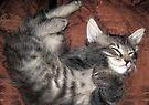 Mikino Sleeping 2 by Jaeda DeWalt