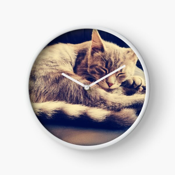 Sleepy cat on couch Clock